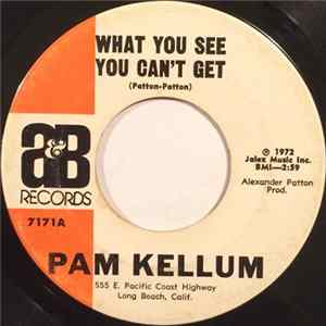 Pam Kellum - What You See You Can't Get / (It's Gonna Be A) Long Hot Summer MP3